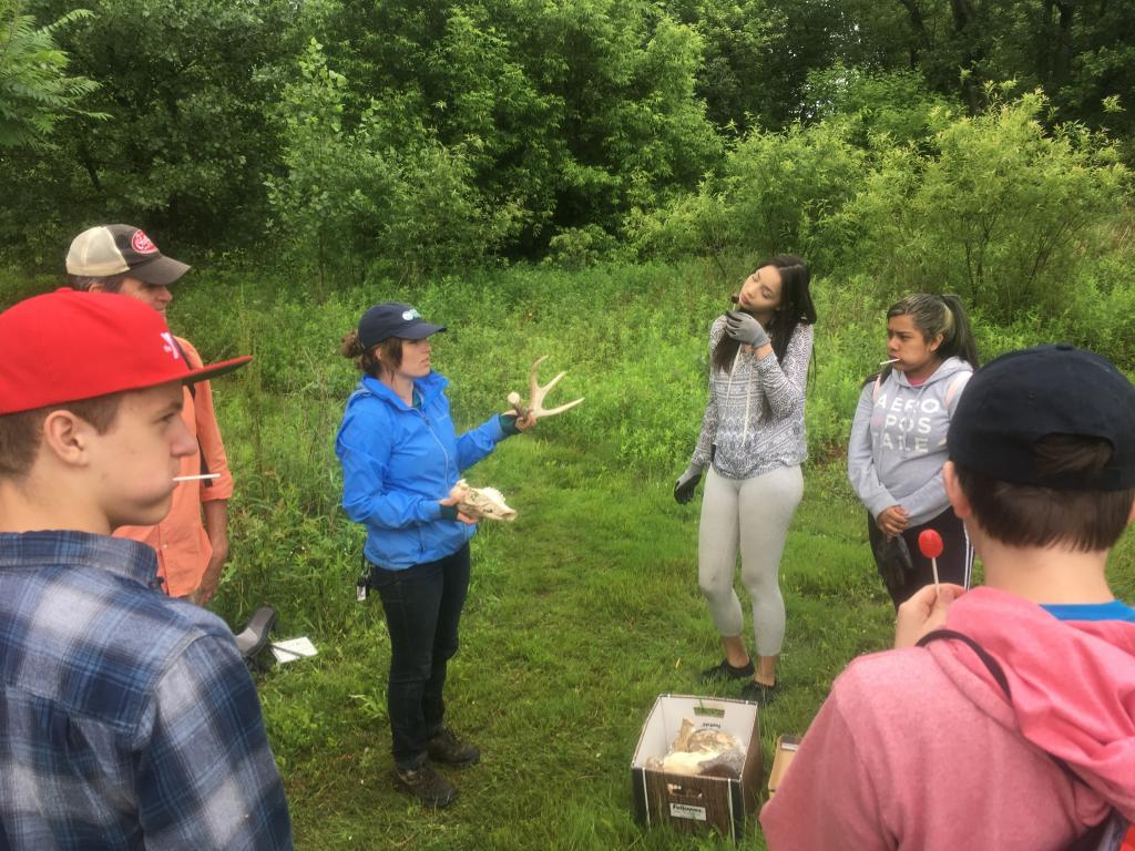 At Housatonic Flats, animal skulls and bones were shared as Mariah Auman shared cool facts about local mammals.